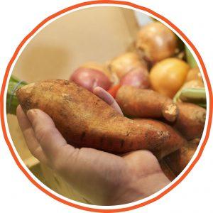 Handling Sweet Potatoes